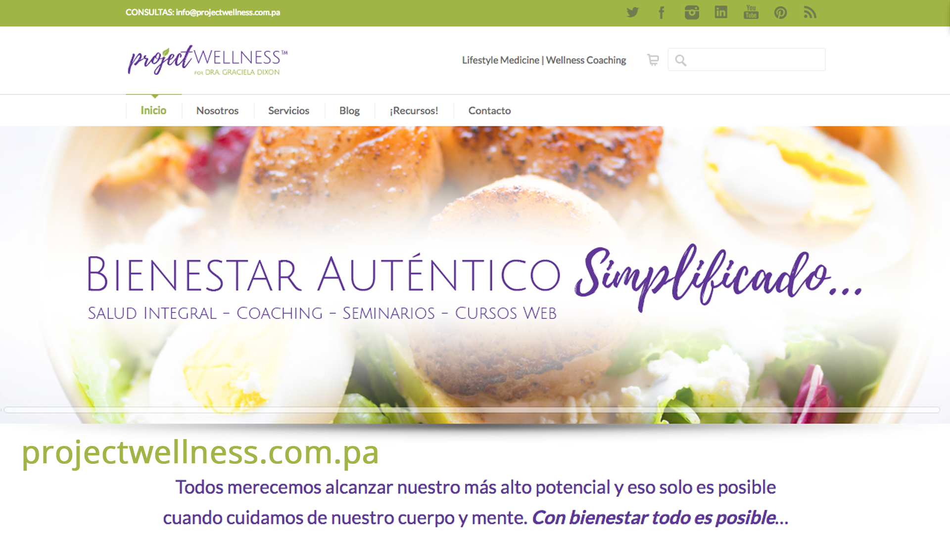 Project Wellness - Diseño Web